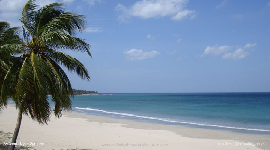 Beach Hotels Near Colombo Sri Lanka