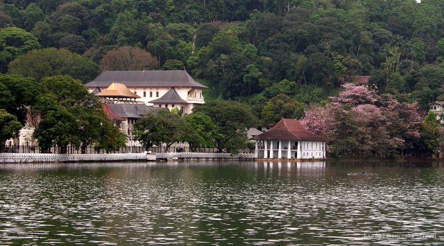 Kandy Sri Lanka Toothrelic Pageant Hotels Image Kandy St T